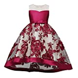 bc915da89c ZARLLE Vestido de Niñas Boda Fiesta de Princesa Encaje de Flor Cóctel  Vestido Fiesta Infantil Elegante