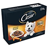 Best Cesar Dog Foods - Cesar Deliciously Fresh Wet Dog Food Selection in Review