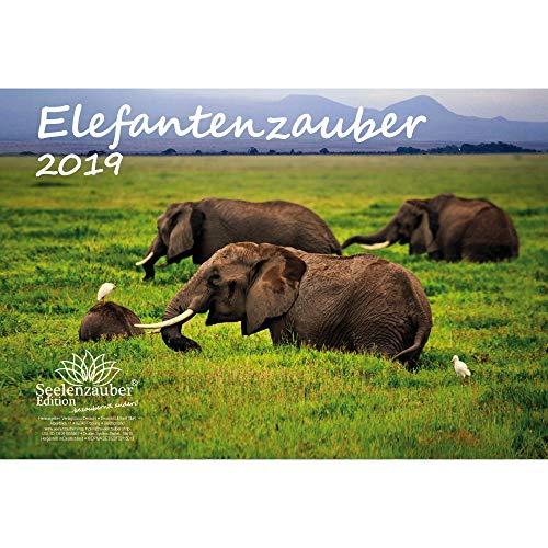 Elefante mágica · DIN A4· Premium Calendario 2019· elefante · África · Animales · Wildnis · Natural · Set de regalo con 1tarjeta de felicitación y 1Tarjeta de Navidad (· Edition Alma mágica