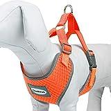 ThinkPet Atmungsaktives Hundegeschirr aus Weichem Air Mesh Gewebe, reflektierend, XL, Neon-Orange