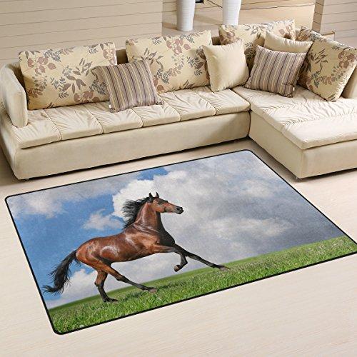 coosun Pferde Gras Wolken Tiere Bereich Teppich Teppich rutschfeste Fußmatte Fußmatten für Wohnzimmer Schlafzimmer 78,7x 50,8cm, Textil, multi, 31 x 20 inch -