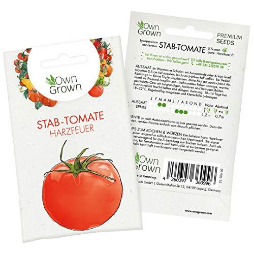 Tomaten Samen Harzfeuer F1: Premium Harzfeuer Tomatensamen zum einfachen Anbau von köstlichen Stabtomaten Pflanzen für Balkon und Garten - 5 Zertifizierte Alte Tomaten Samen von OwnGrown