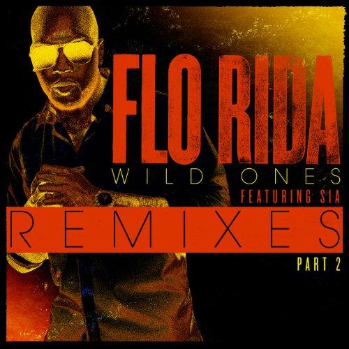 Wild Ones (Feat. Sia) [Remixes...