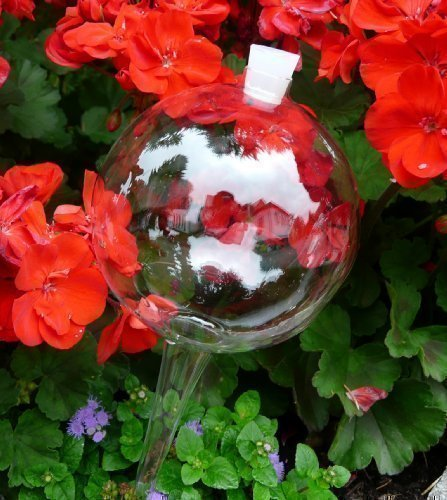 4 Durstkugeln Bewässerungskugeln mit Silikonstopfen 8 cm Durstkugel Pflanzensitter DKMS