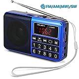 PRUNUS L-238SW Radio Portable Rechargeable FM/AM(MW)/SW USB Micro-SD et Lecteur Mp3 intégré. Clavier du Tableau de Bord doté de...