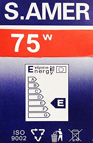 Zoom IMG-1 10 lampadine da 75 watt