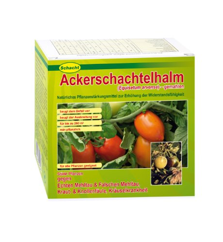 Schacht Ackerschachtelhalm 200 g