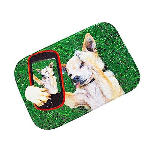 Rumas Tür Teppiche Hund Selfie Badezimmer saugfähig, rutschfest,