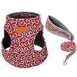 Etophigh Katzenweste-Geschirr und Leinen-Set,einstellbar fluchtgeschützt Katzengeschirr für Outdoor-Walking Weiche Westengeschirr für Katzen Kätzchen Welpen kleine Hunde, XS S