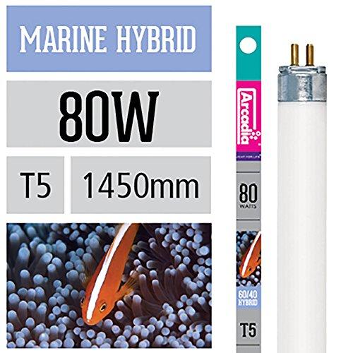 Arcadia Marine Hybrid T5 Lampe 80 Watt Meerwasser Aquarium Korallen Fisch 1450mm