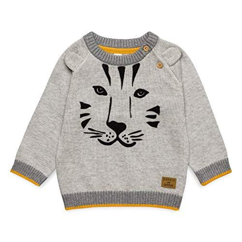 ESPRIT KIDS Baby-Jungen Sweatshirt Sweater, Grau (Mid Heather Grey 260), 86