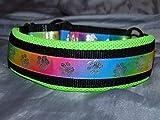 Hunde Halsband Regenbogen Pfoten