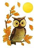 dpr. Fensterbild Set 6-TLG. Eule auf AST mit Mond und Blätter Herbst Fenstersticker Fensterdeko Herbstdeko
