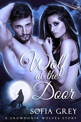 Wolf at the Door (Snowdonia Wolves Book 1) (English Edition)