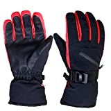 Tobbiheim Ski Handschuhe Reißverschlusstasche (M)