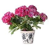 Blumentopf glasiert Pflanzentopf handbemalt Übertopf rund Terracotta Krakelee Glasur Riss Muster 16cm H14cm