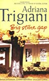 Big Stone Gap (Big Stone Gap Saga 1)