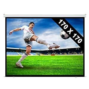 170x170 cm Vinylfaser Rollo-Leinwand für HDTV Beamer Projektoren Heimkino (Gainfaktor 1.0 , Ø 244cm, 1:1)