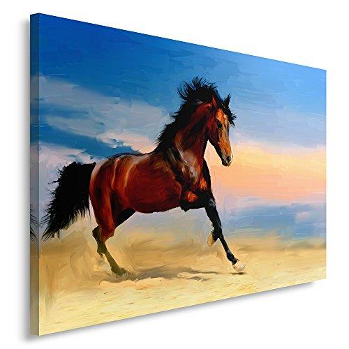 Feeby, Leinwandbild, Bilder, Wand Bild, Wandbilder, Kunstdruck 30x40cm, TIERE, PFERD, ANSICHT, MEHRFARBEN