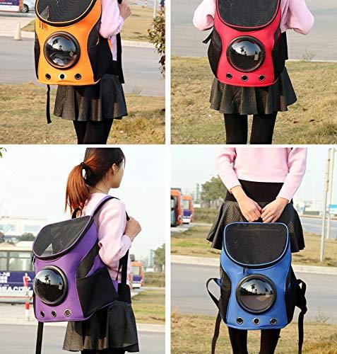 LLYU Haustier spezielle Outdoor-Rucksack große Kapazität tragen dauerhafte atmungsaktive wasserdichte Mode Hund Platz Kapsel Reisetasche (Farbe : Blau) - Blau Bagless Staubsauger