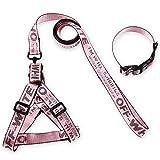 QYJpB Reflektierende Hundeleine Gepolsterte Haustierkette Seil Extra Schwere Hundeleine Weich Gepolsterte Griff Für Komfort (Farbe : Rosa, größe : L)