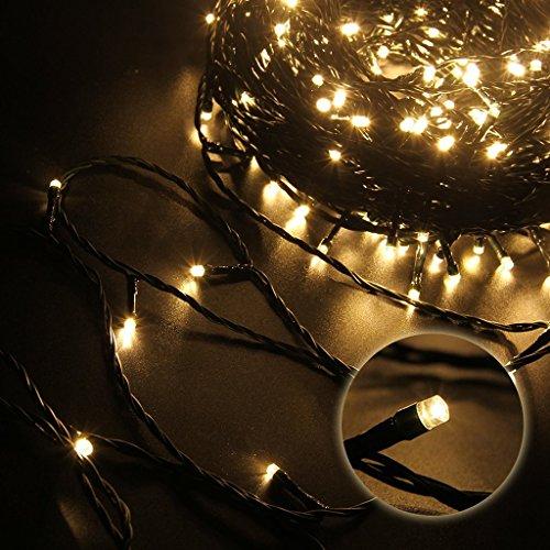 GHJ 100-1000 Warmweiss LED Lichterkette Strip mit 31V Transformator auf Dunkelgrün Kabel für Weihnachten Deko Hochzeit Party usw. (900LED) (100l Led)