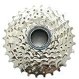 DNP 7 Speed Screw-on Freewheel Nickel Plate 11-28T #ST1780
