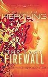 The Last Firewall (Singularity Series Book 3) (English Edition)
