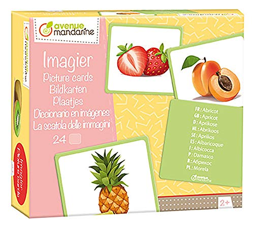 09C Packung mit 24 Bildkarten, ideal für Kinder ab 2 Jahren, mehrsprachig, 12 Paaren, 1 Pack, Früchte ()