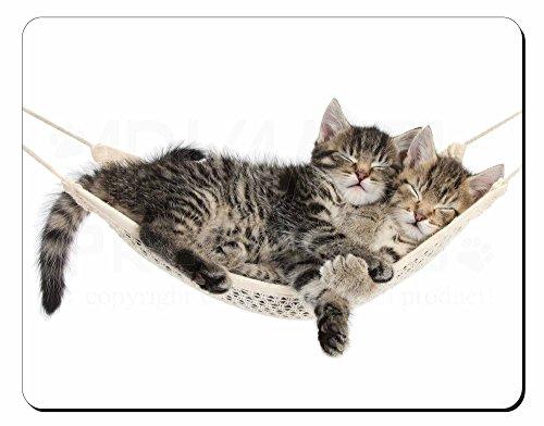 Due Gattini in Hammock Tappetino mouse del computer pad regalo di natale