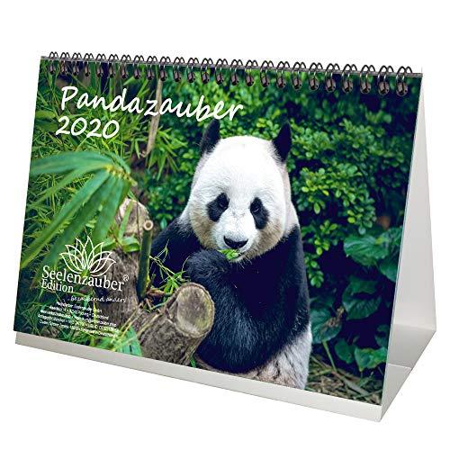 Pandazauber - Calendario de mesa DIN A5