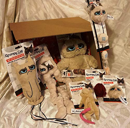 Paradise Pets GRUMPY CAT BOX WITH CAT TOYS AND GIFT FOR OWNER