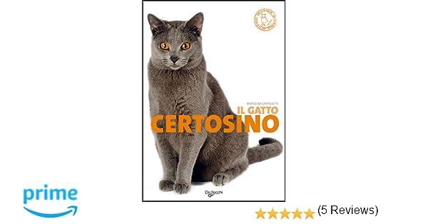 Amazonit Il Gatto Certosino Mariolina Cappelletti Libri