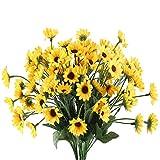 Los girasoles siempre han sido populares entre las personas debido a sus colores brillantes. Representa calidez, luz y buen humor para las personas. Las espléndidas flores, al igual que su encantadora sonrisa, son tan hermosas y encantadoras....