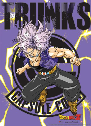 Ball Trunks Z Kostüm Dragon (Dragon Ball Z - Trunks Wallscroll 112 x 84 cm US Import Original &)