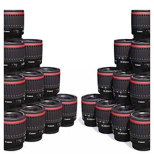 Canon Makro-Objektiv (1:1 Makro, verbesserte Version des Nahaufnahmenobjektivs Canon EF 35-80 mm f4-5.6, Digital- und Film-EOS, EF-S, EFS, 35-80 mm, entspricht circa 60-130 mm auf einem 1,6-fach-Crop-Body und 50-100 mm auf einem 1,3-fach-Crop-Body, 1,8- / 0,9- / 0,4- / 0,7-fache Vergrößerung, kompatible Modelle: EOS 5D / 7D / 60D / 550D / 600D / 650D / 700D / 1000D / 1100D und andere)