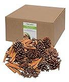 Homekit Assortimento Floreale - 100 g di Anice a Stella Intera - 200 g Bastoncini di Cannella - 200 g pigne - Decorazioni per Albero di Natale, ghirlande e Forniture per fioristi