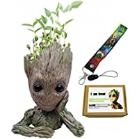 Figuras de acción Groot Guardianes de la maceta Galaxy Baby Modelo linda Maceta de pluma con Groot Baby Lanyard