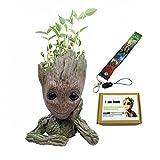 """Los pedidos incluyen 1. Maceta de flores de raíz x 1 2.Groot baby lanyard x1 3. Impreso con la exquisita caja """"I am Groot"""" x1 4. tarjeta de servicio post-venta con la serie LEESHANG """"GuangTouL"""" serie de productos x1"""