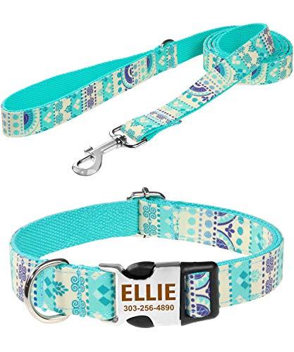 Taglory Personalisierte Halsband Leine, Gravierte Metallschnalle Halsband Hund Name Telefonnummer, Mode-Muster hundehalsband mit 1.5m Leine Set für Kleine Hunde,Türkis