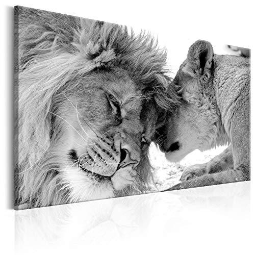 W15Y8 Rey Animales - Cuadro Pintado Mano - Lindo Leopardo