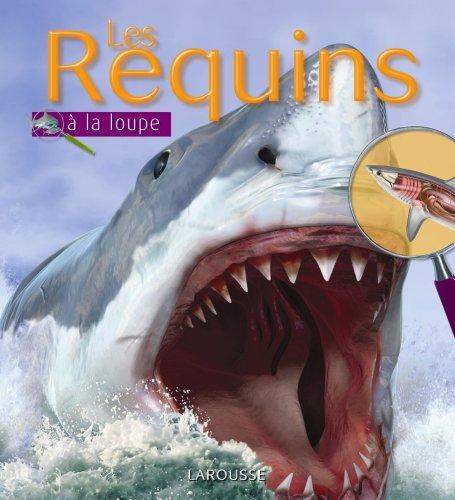 """<a href=""""/node/17398"""">Les requins</a>"""