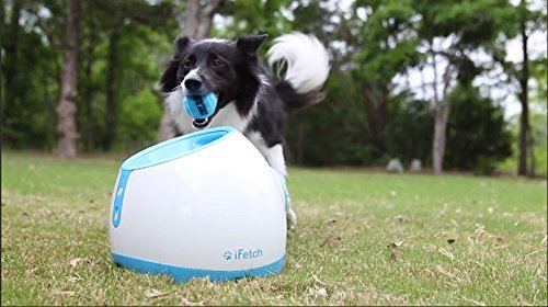 iFetch Too Automatic Ball Launcher for Larger Dogs 4