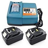 Ersetzenakku und Ladegerät Power Kit für Makita BL 1840 4 Ah, 2 Akkus + DC18RC , DC18RA ,196866-5, 14,4Volt ~18Volt Akku