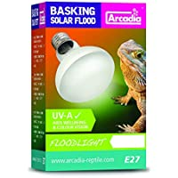 Arcadia sbf100 Basking Solar lámpara UVA Floodlight