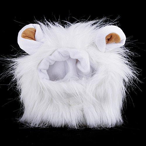 GGG Fancy Pet Hund Hat Kostüm waschbar leicht Löwe Mähne Perücke für Katze Halloween Kleid bis mit ()