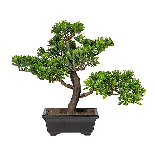wohnfuehlidee Kunstpflanze Bonsai Podocarpus Grün, Inklusive Kunststoff-Schale, Höhe ca. 30 cm