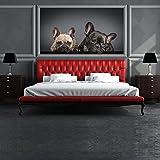 Bulldog francés Fotomurales Perritos cachorros murales pared Dormitorio Decoración Disponible en 8 Tamaños Pequeño Digital