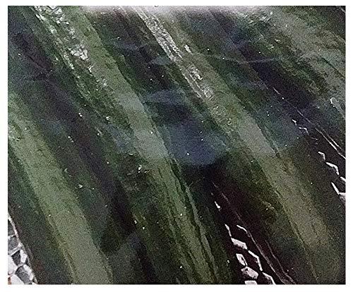 150 aprox – Gurkensamen Piret Bing – Cucumis Sativus in Originalverpackung Made in Italy – Gurken