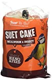 Suet to Go Mealworm and Insect Suet Cake with hanger (Pack of 8)